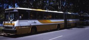 hawaibus47