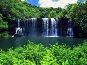 Kauai-Waterfalls-kauai-the-garden-island-15360348-1600-1200